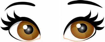 Eyes Brown Clip Clipart Eye Female Eyeball