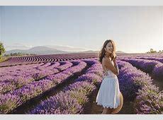 bridestowe estate's lavender dreams K is for Kani