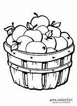Apple Coloring Barrel Apples Pages Fruits Fall Fun Printcolorfun Recommended sketch template