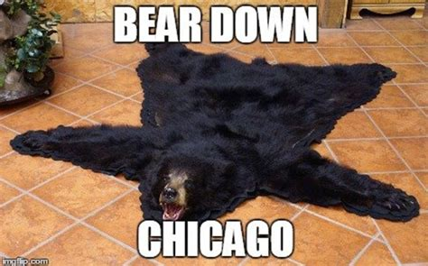 Funny Chicago Bears Memes - these chicago bears memes are hard to look at but funny as hell