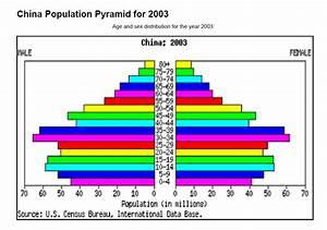 bevölkerungspyramide indien