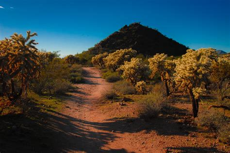 arizona desert landscape  stock photo public domain