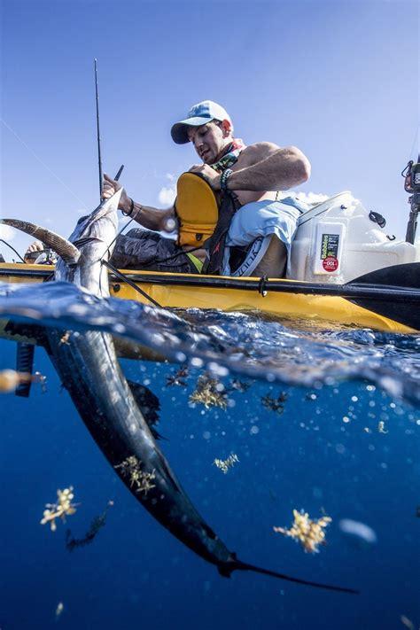 sailfish kayak caught pompano beach florida smack naples jon released saturday win morning down his sentinel sun angler tourney wins