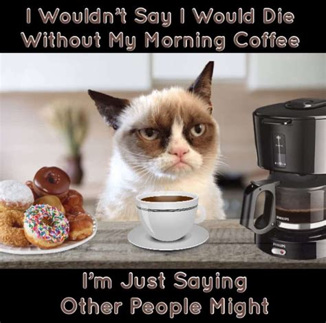 Your daily dose of fun! 29 Funny Coffee Memes To Keep You Laughing - Craft Coffee Guru