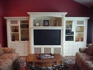 Custom Wall Units - Traditional - Family Room - new york