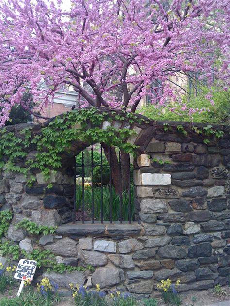 a secret garden saint john the divine a secret garden in morningside heights out walking the dog