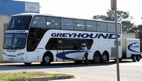 Greyhound  Cape Town Projects, Photos, Reviews And More