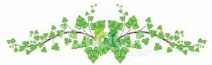 Green Ivy Vine Border Stock Vector - FreeImages.com