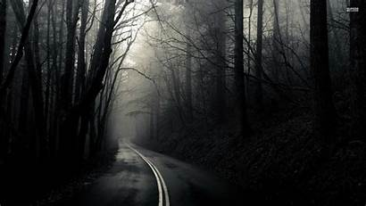 Dark Spooky Forest Woods Nature Road Wallpapers