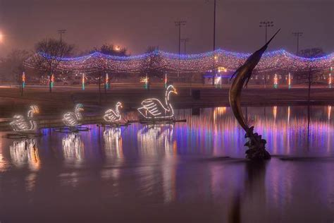 Slideshow 694-17: Christmas lights reflected in a pond of ...
