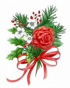 Blumen Zu Weihnachten : weihnachtsstern blumen animierte bilder gifs animationen cliparts 100 kostenlos ~ Eleganceandgraceweddings.com Haus und Dekorationen