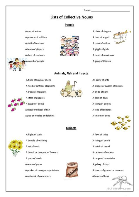 collective noun worksheets goodsnyc