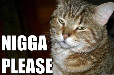 Nigga Please Memes - nigga please cat memes quickmeme