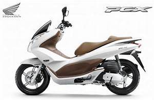Scooter Honda 125 Pcx : the new honda pcx 125 scooter raises the bar scooter community everything about scooters ~ Medecine-chirurgie-esthetiques.com Avis de Voitures