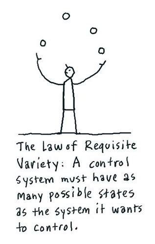 fragile  agile  law  requisite variety ashbys