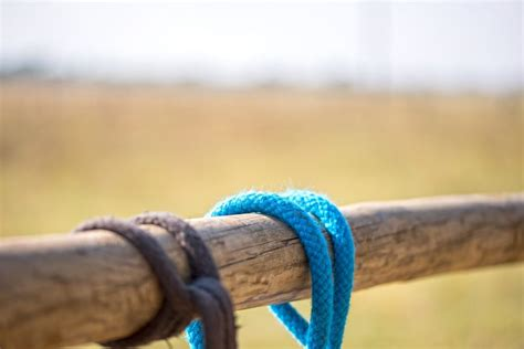 knot release quick tie horse