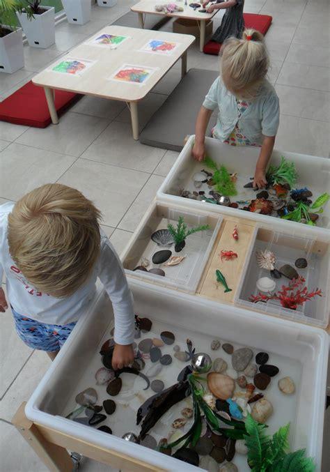 exploring rock pools new horizons preschool classroom 536   9416e5bd486f7e254376c9c122392fc0