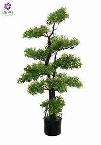 Buchsbaum Weißer Befall : k nstlicher bonsai buchsbaum ca 103cm ~ Frokenaadalensverden.com Haus und Dekorationen