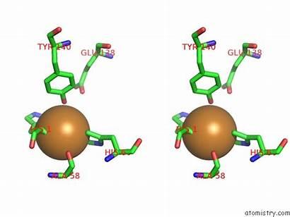 Copper Cu Pdb 4mai Stereo Monooxygenase Lytic