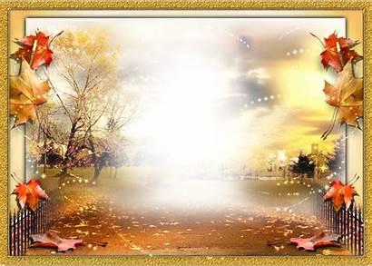 Transparent Nature Leaves Falling Fall Autumn Landscape