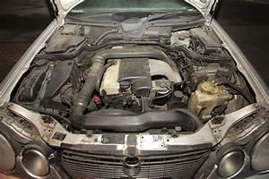 Mercedes W210 Fiche Technique : w210 290 td fum e blanche et blocage moteur 3000 trs min mercedes m canique lectronique ~ Medecine-chirurgie-esthetiques.com Avis de Voitures