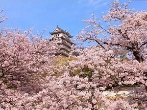 Art Et Vie Messanges : les circuits kyoto art et vie naoshima japon magiclub voyages ~ Nature-et-papiers.com Idées de Décoration