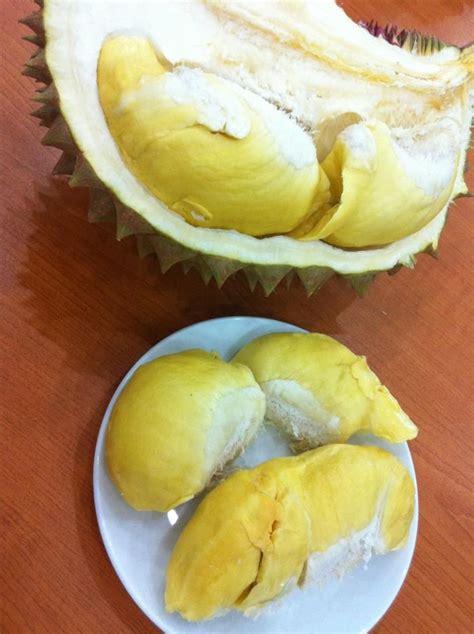 dorian cuisine 63 best images about khmer food on pork