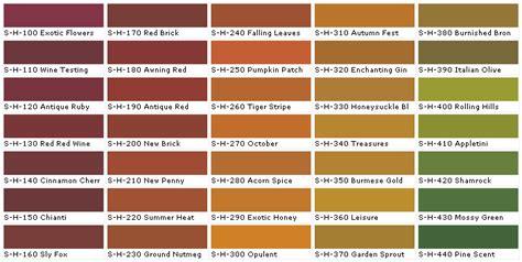 Palette Spice It Orange Russet Coral by Column Sixth Row Quot Chianti Quot Paint For The Accent