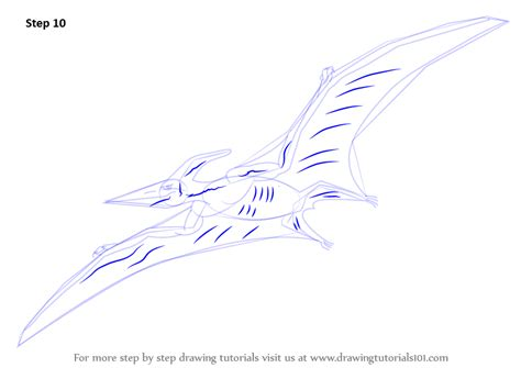 learn   draw  pterodactyl  creatures step