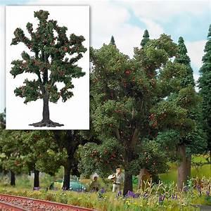 Bäume Verschneiden Obstbäume : kirschbaum obstb ume ausgestaltung b ume katalog ~ Lizthompson.info Haus und Dekorationen