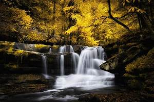 Waterfall on a river in the forest and trees leaves yellowed