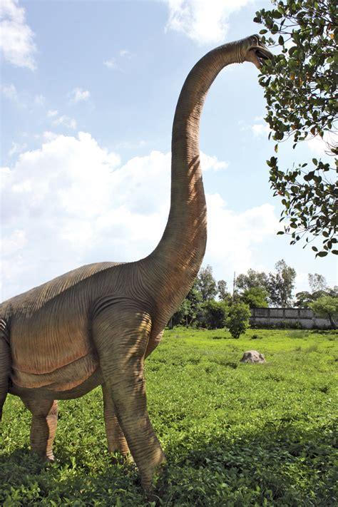 brachiosaurus dinosaur statue the green