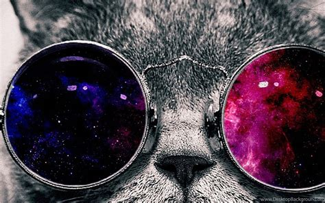 space galaxy cat  glasses page  pics  space desktop background