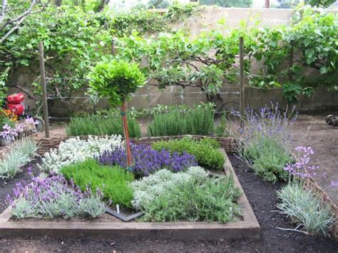 herb garden design ideas  pinterest vertical