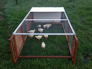 Vantucky Fried Chicken – Raising Pasteured Poultry Meat ...