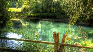 Nature HD Wallpapers, Nature Full HD 1080P Wallpapers ...