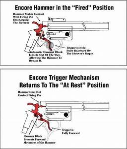 Understanding The Trigger Mechanism Of The Encore