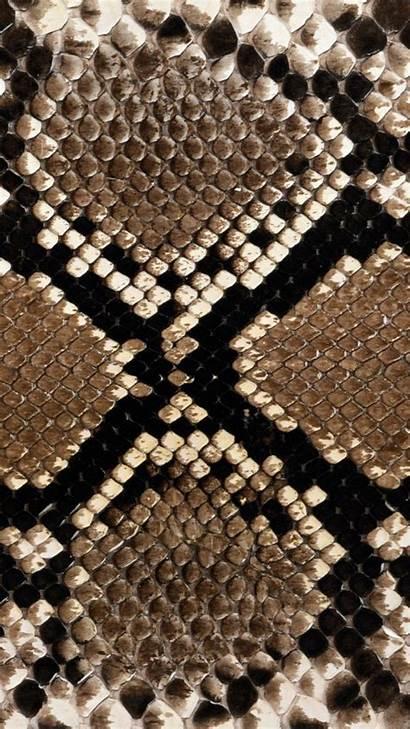 Snake Skin Snakeskin Patterns Wallpapers Surface Pattern