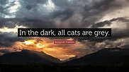 "Benjamin Franklin Quote: ""In the dark, all cats are grey ..."