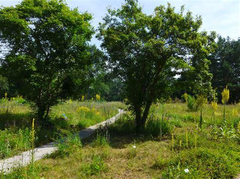 Botanischer Garten Bayreuth Führungen by Botanischer Garten Bayreuth