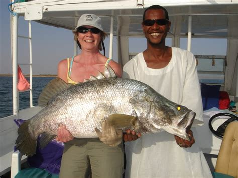 nile perch  big fish   voracious appettite