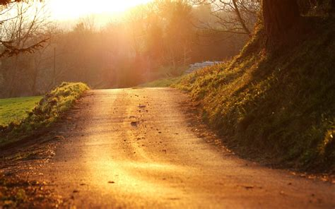 road, Landscape, Sunlight, Path, Nature Wallpapers HD ...