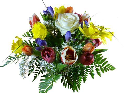 Foto Blumenstrauß Kostenlos by Kostenloses Foto Blumenstrauss Freigestellt Blumen