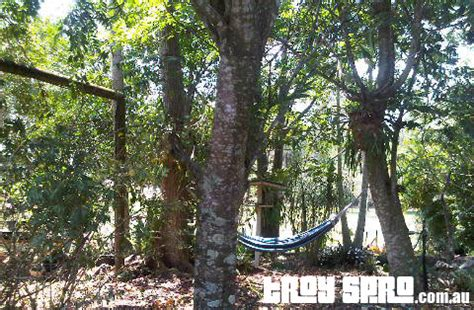 How To Put A Hammock Up by How To Put Up A Hammock It Is A Great Skill Troy Spro