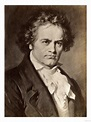 10 Interesting Facts About Ludwig van Beethoven ...