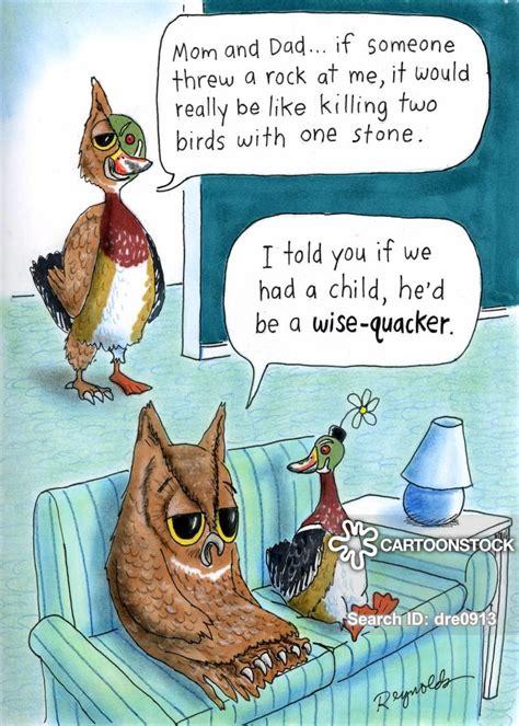 kill  birds   stone cartoons  comics funny