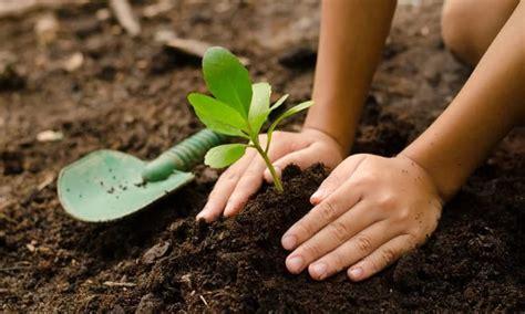 Your sad stock images are ready. SAD Savezna država Washington legalizirala kompostiranje ...