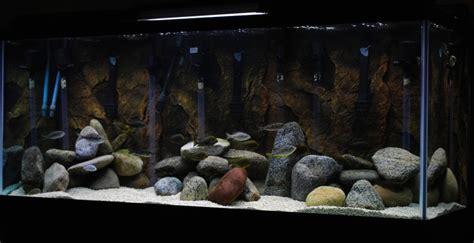 love    rocks    find pond rocks