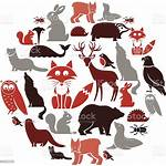 Animal Icon European Vector Illustration Animals Otter