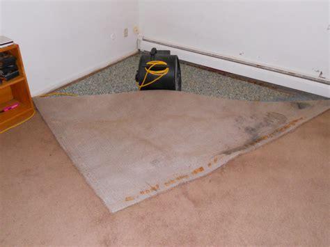 Hardwood Floor Refinishing Mankato Mn by Carpet Repair Minneapolis Floor Matttroy